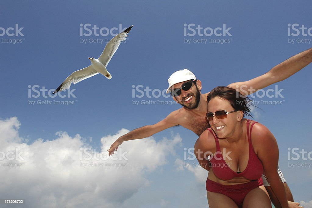 flying with a seagull stock photo