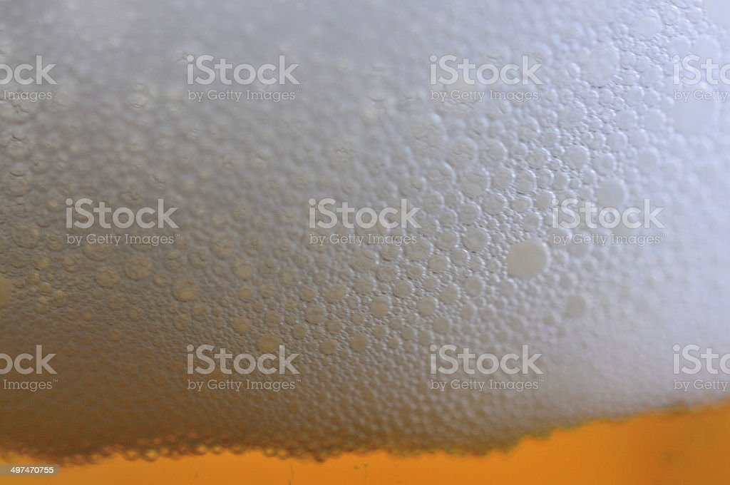 Foam and beer stock photo