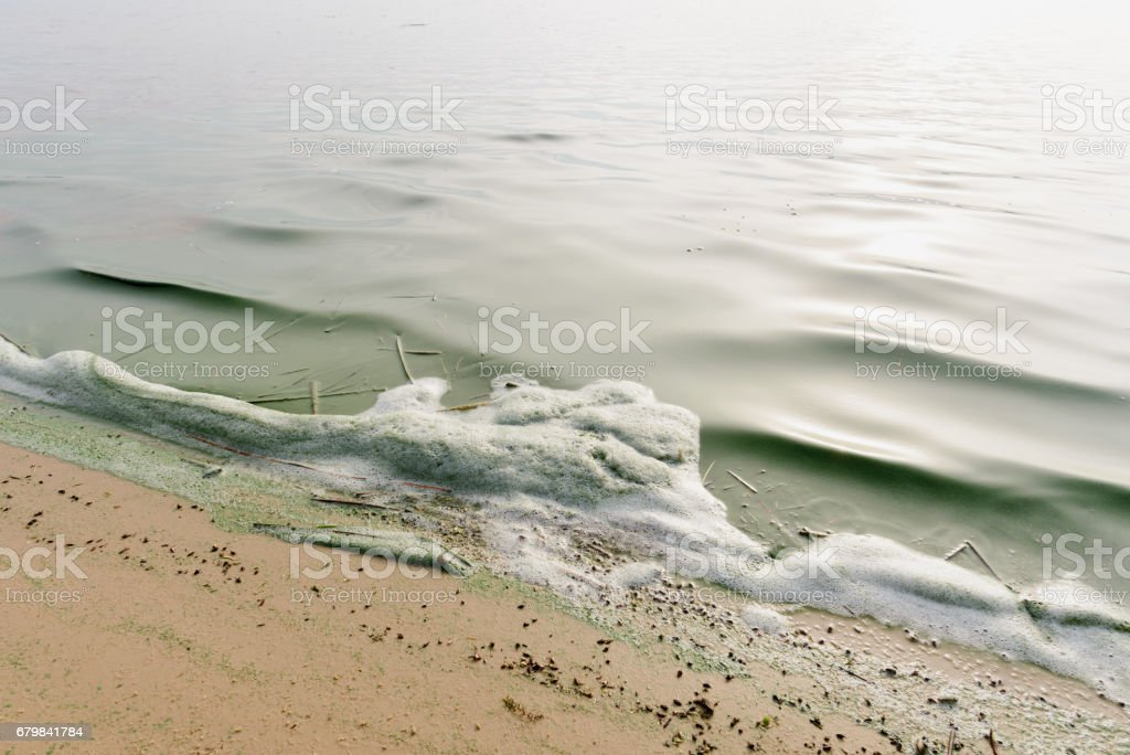 Foam Pollution in the River stock photo
