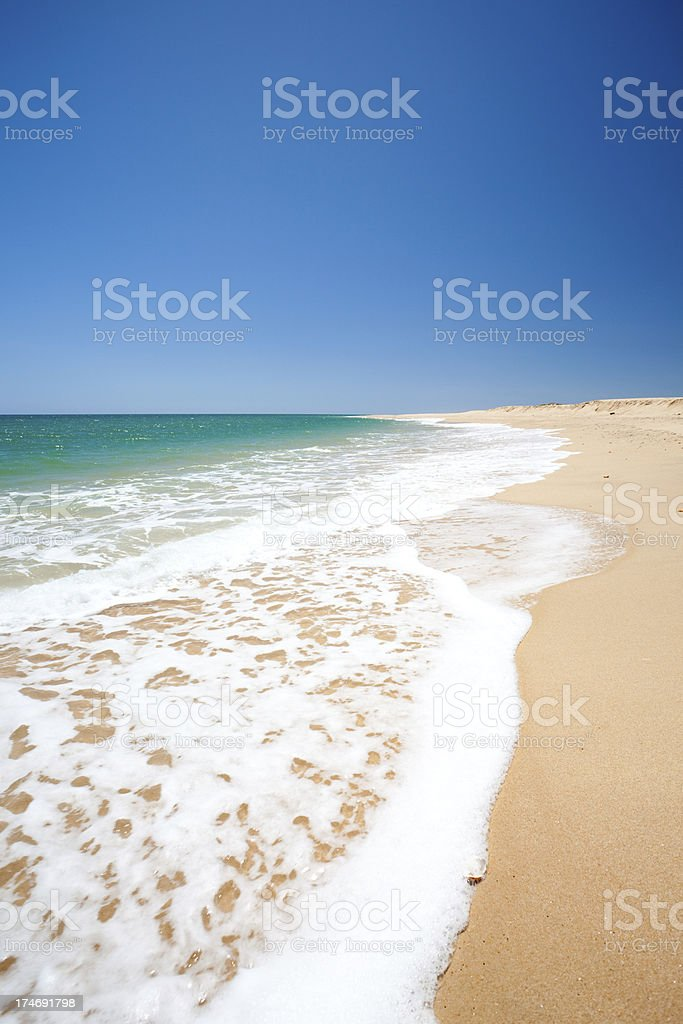 Foamy shoreline royalty-free stock photo