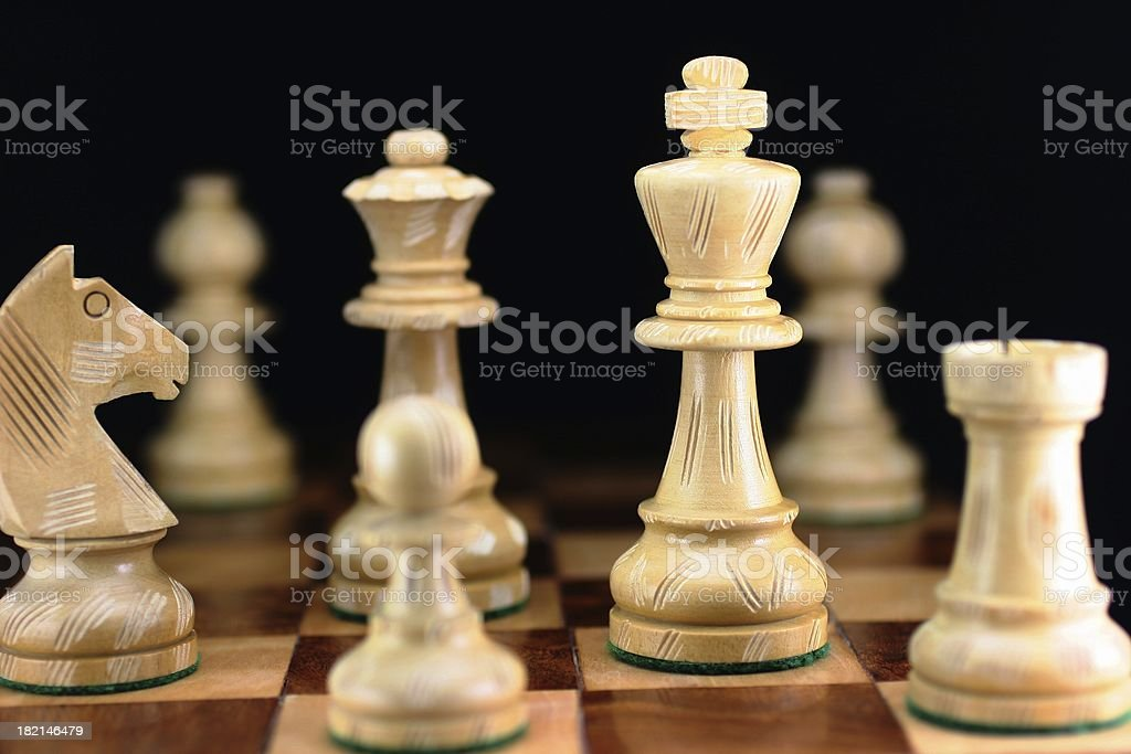 Focus On The King royalty-free stock photo