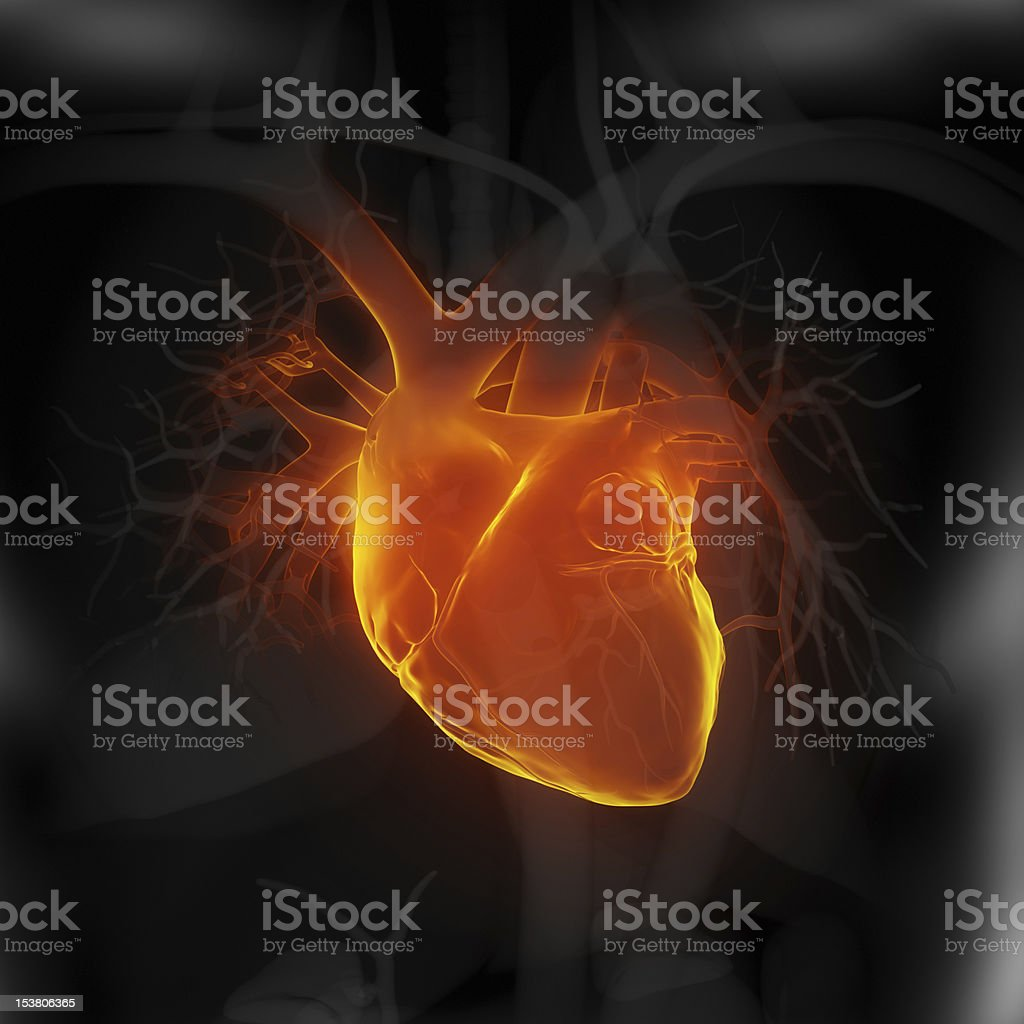 Focused on human heart in black stock photo