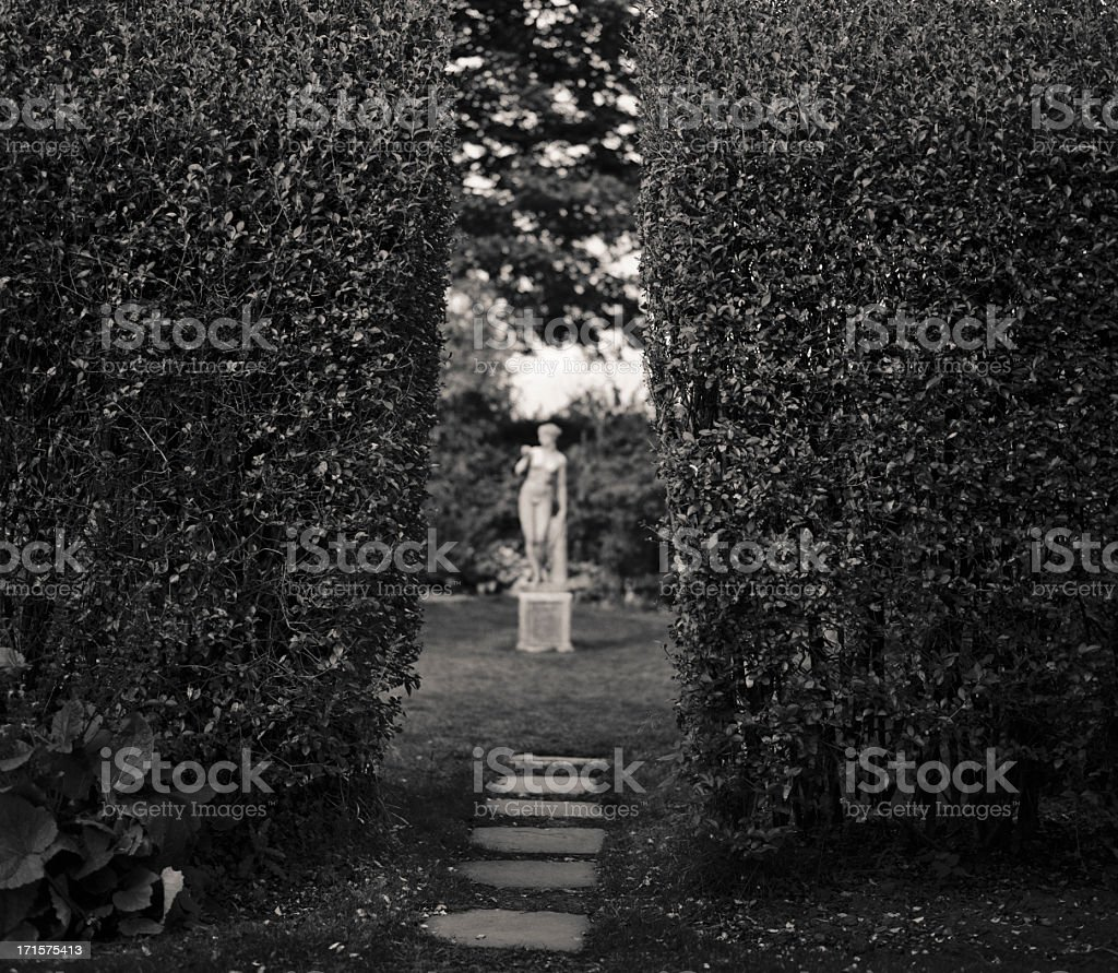 Focusing on the wrong thing - statue behind the hedges stock photo