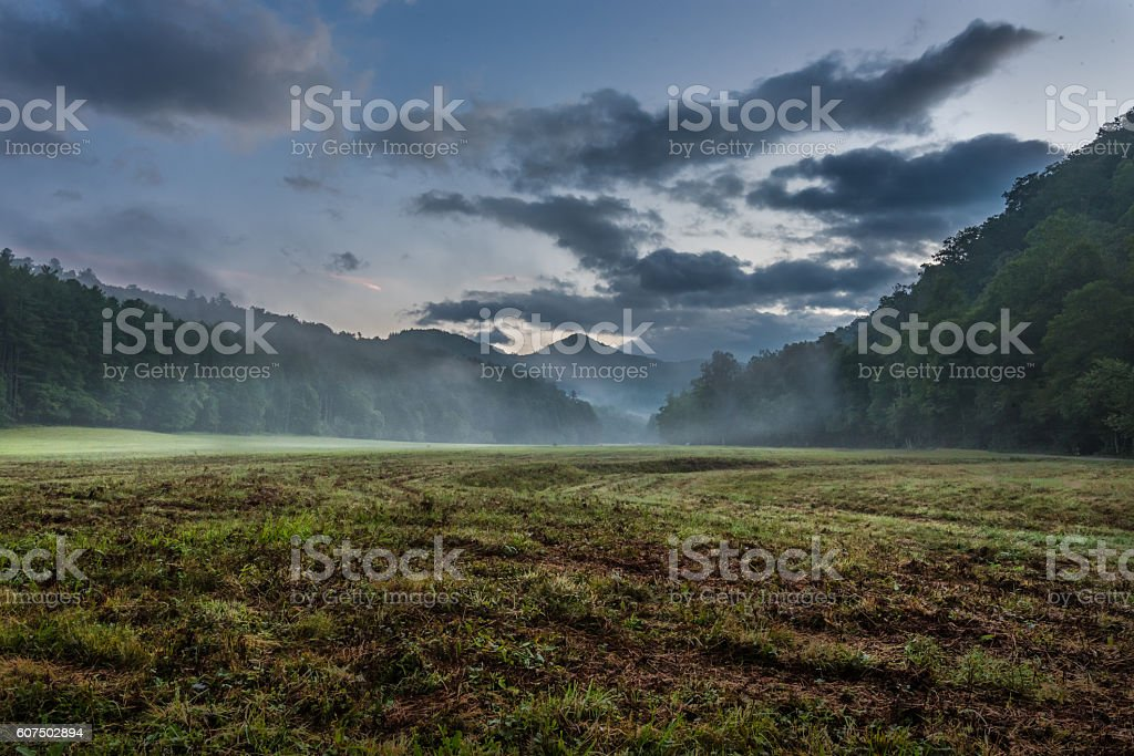 Fog Blows Through Grassy Valley in Summer stock photo