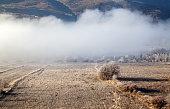 Fog Collapsed Land