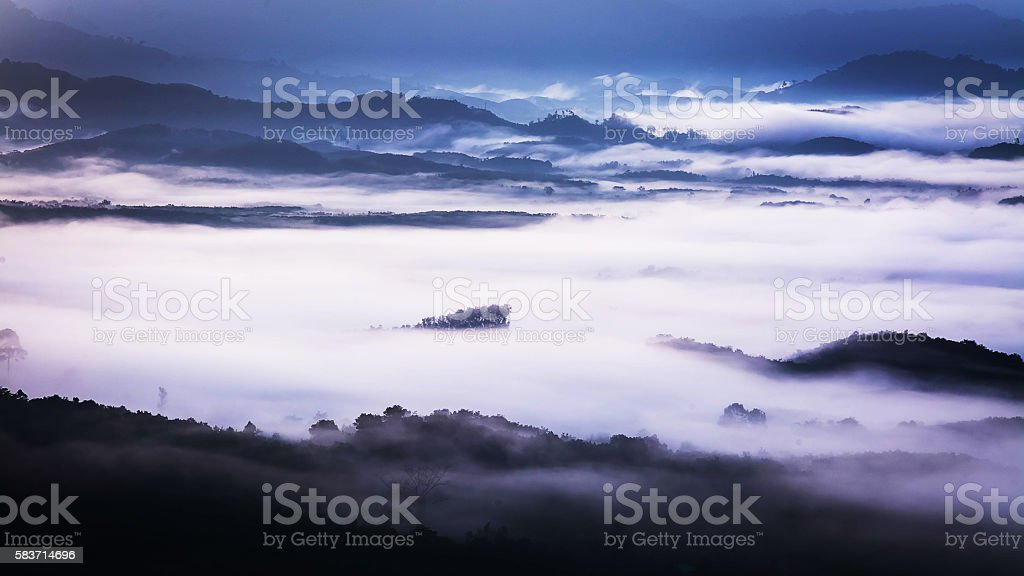 Fog covering the mountain forests stock photo