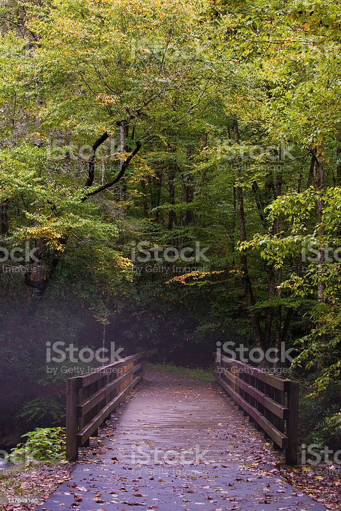 Fog in Great Smoky Mountains royalty-free stock photo