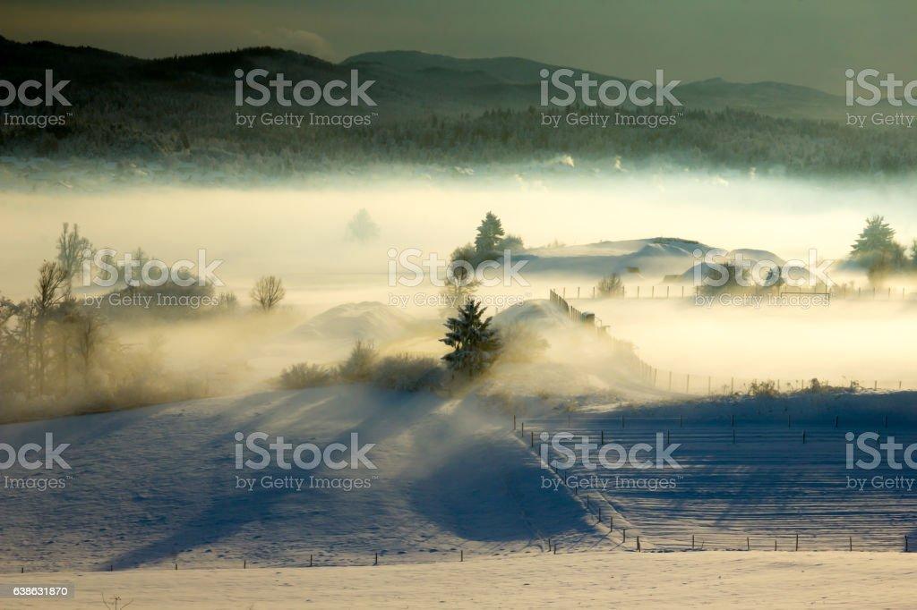 Fog in morning sun stock photo