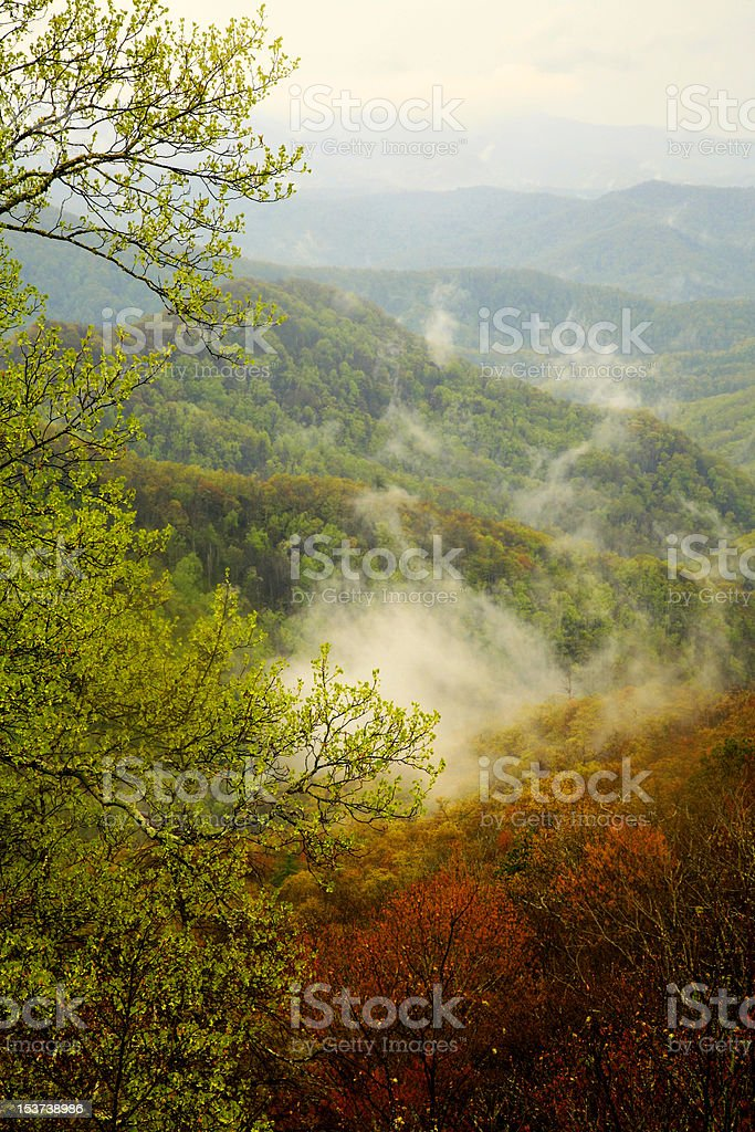 fog in mountain valley stock photo