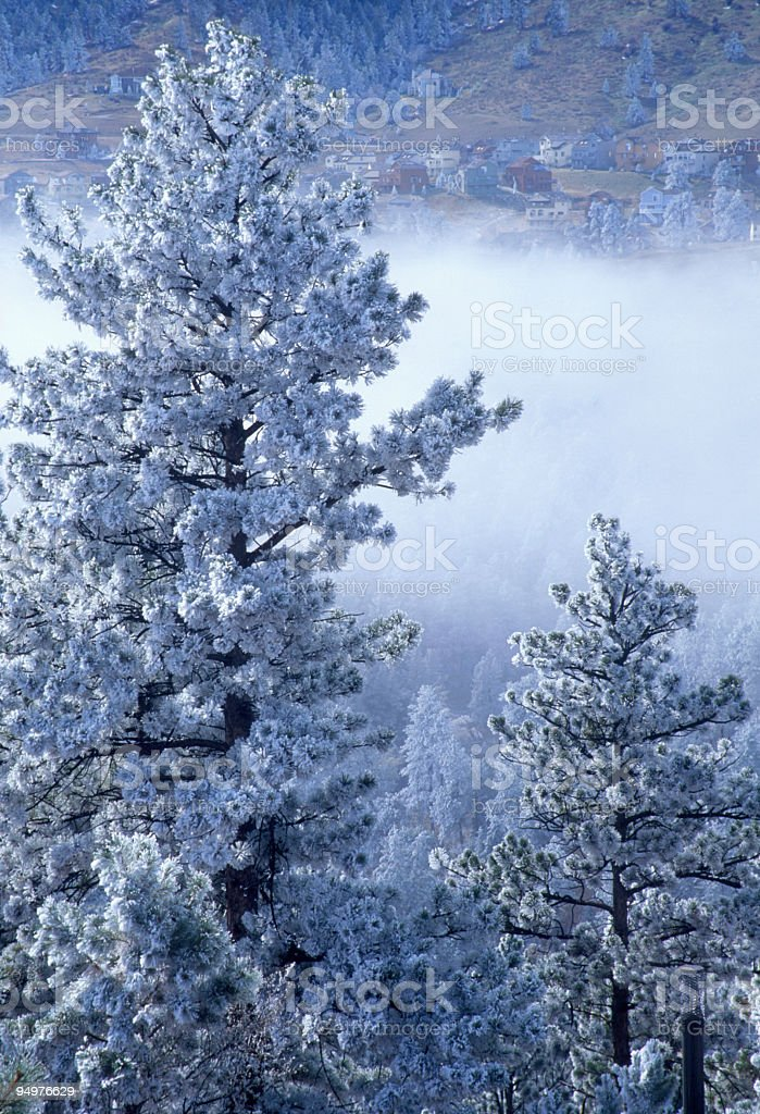 Fog in the Colorado Foothills stock photo