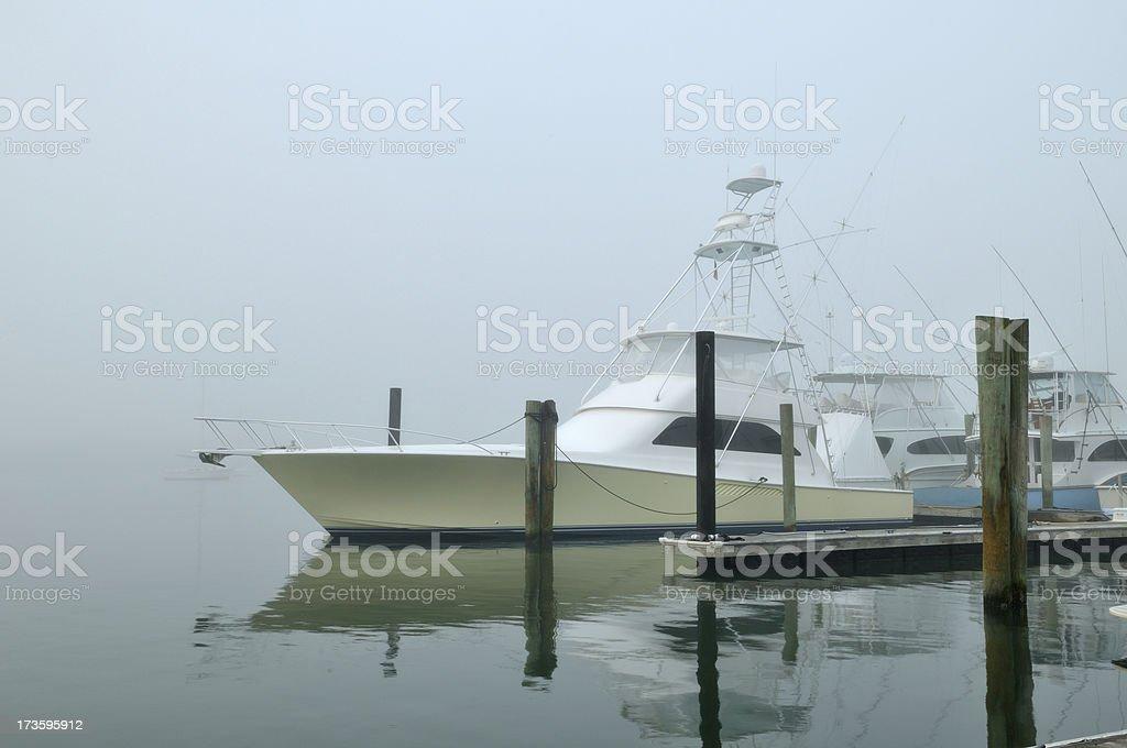 Fog in the marina. stock photo