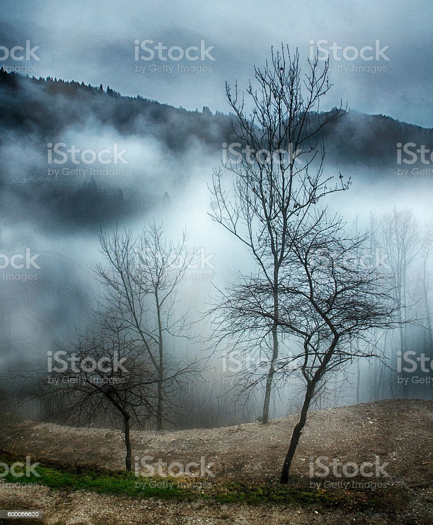 Fog in the Mountains stock photo