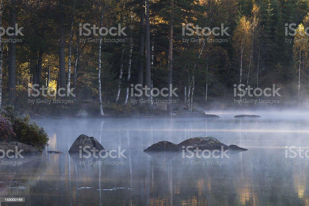 Fog landscape royalty-free stock photo