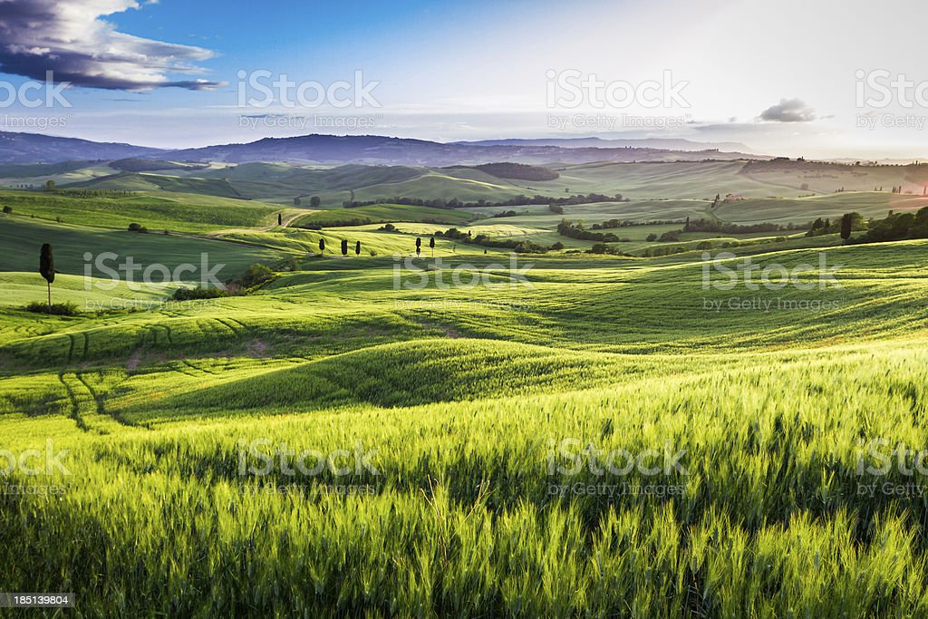 Fog lifting off a Tuscan valley in time for sunset stock photo