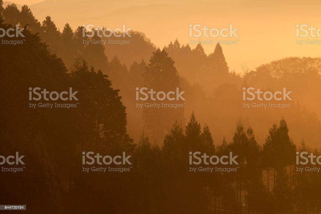 Fog mountain stock photo