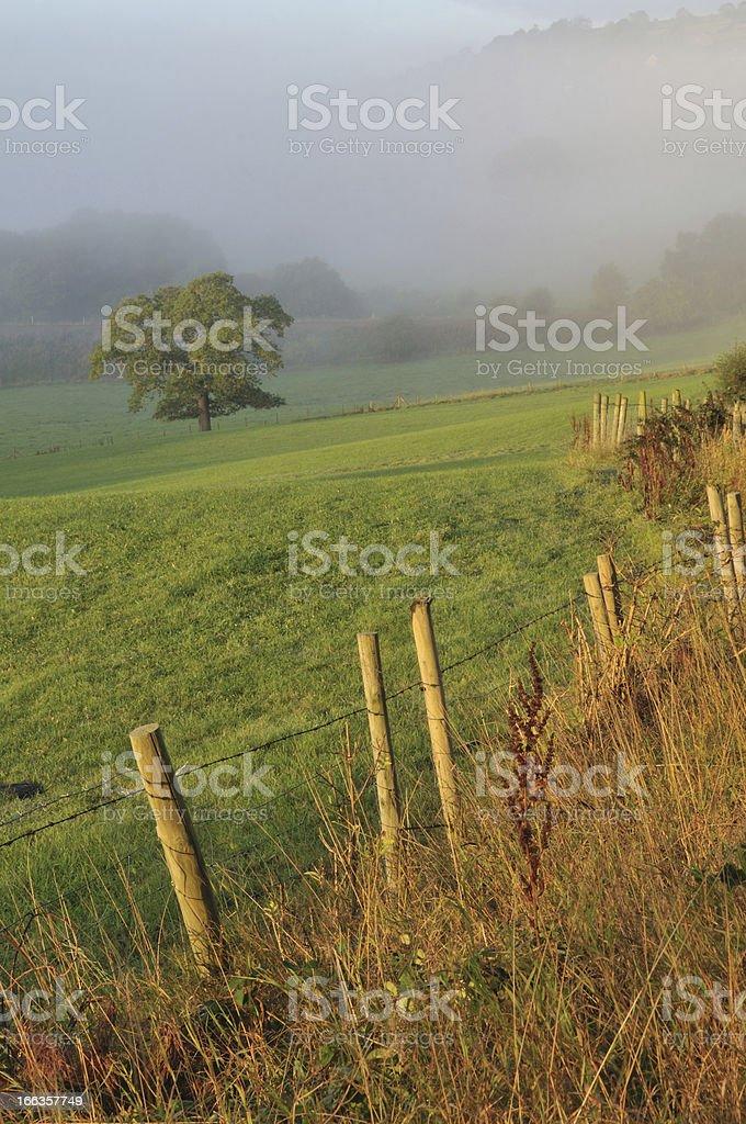 Fog on the Moors. stock photo