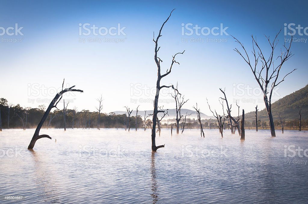 Fog on the Water royalty-free stock photo