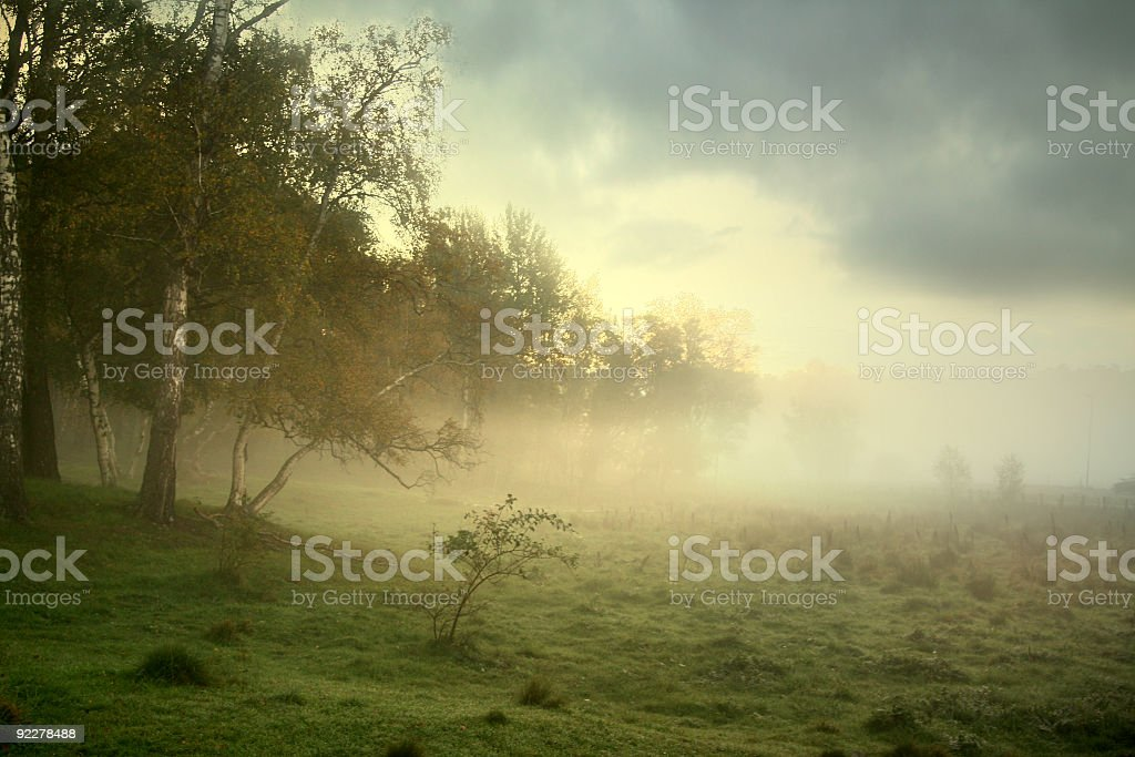 Fog over field making it mysterious royalty-free stock photo