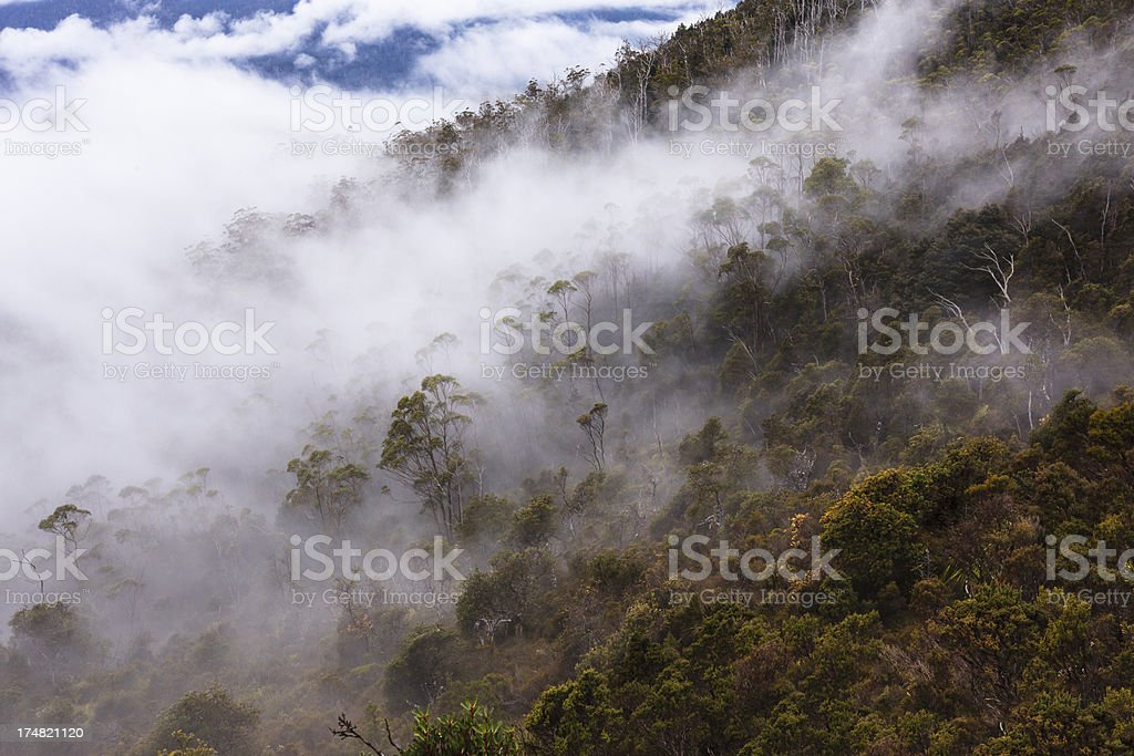 Fog over hill royalty-free stock photo