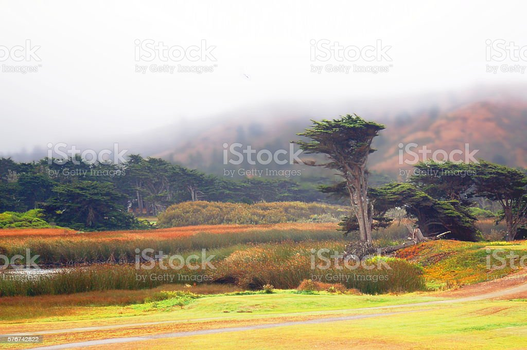 Fog Over Pacifica Coast Hill stock photo