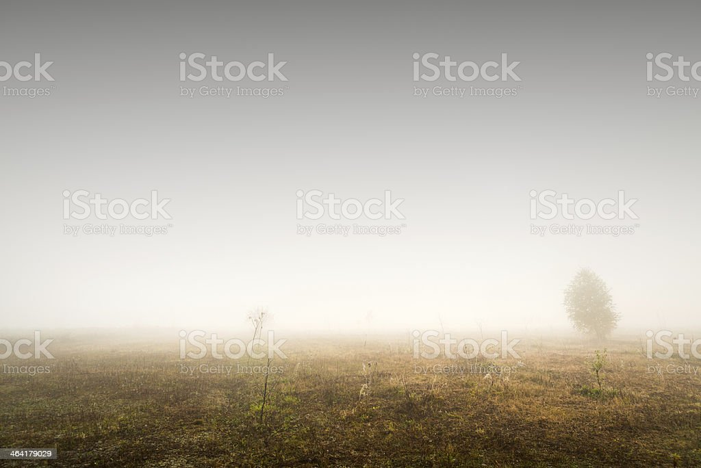 Fog Over the Ground - 36 Mpx royalty-free stock photo