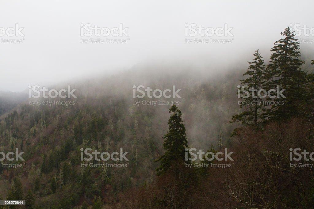 Fog Over The Mountain stock photo