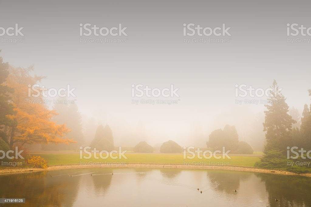 Fog Over the Pond - 36 Mpx royalty-free stock photo