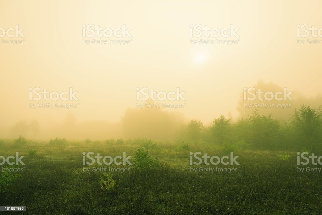 Fog Over theLea - 36 Mpx royalty-free stock photo