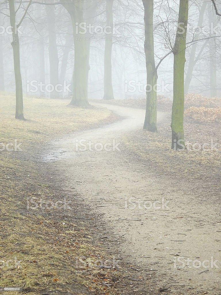 fog royalty-free stock photo
