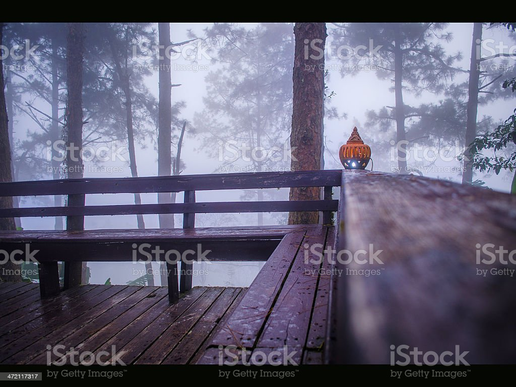 Fog with Lamp stock photo