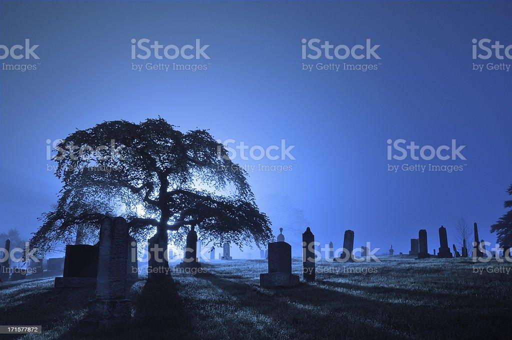 Foggy backlit graveyard stock photo