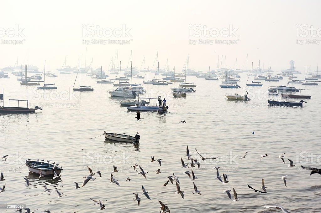 foggy  barbour in Mumbai stock photo