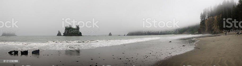 Foggy Beach at Scott Creek stock photo