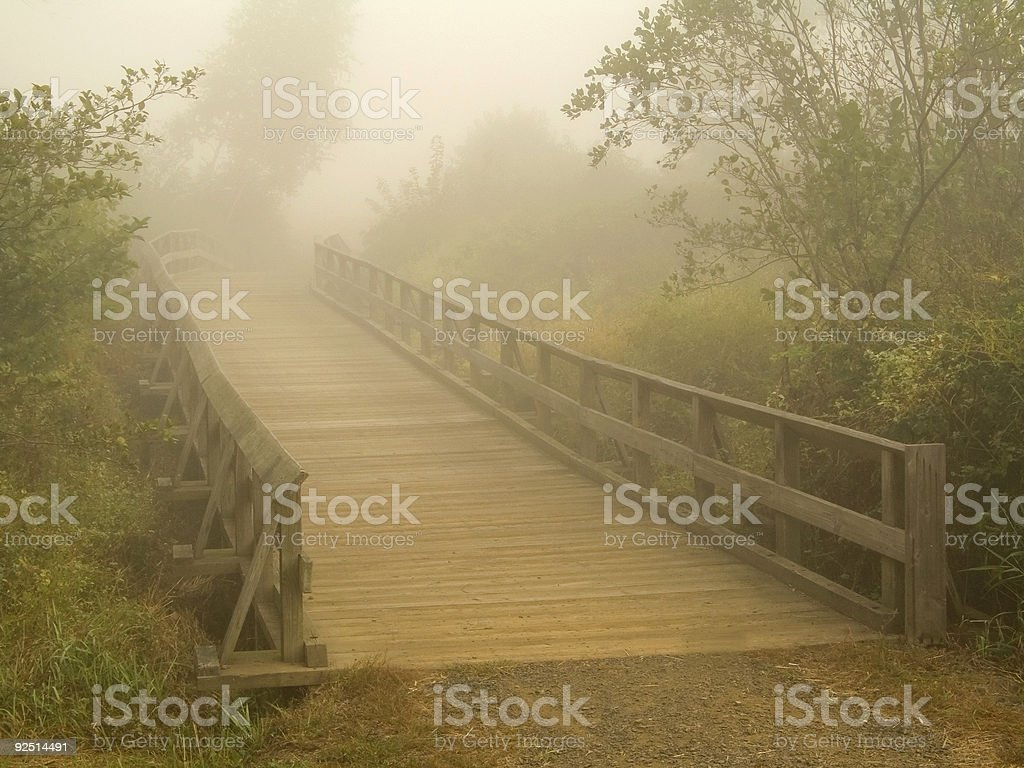 Foggy Bridge royalty-free stock photo