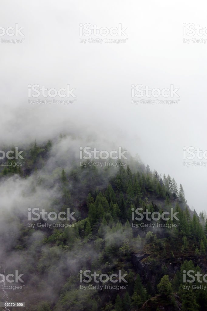 foggy clouds rising from dark alpine forest stock photo