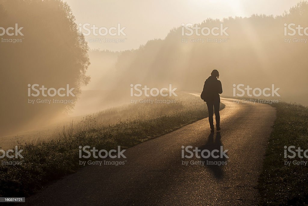 Foggy dawn stock photo