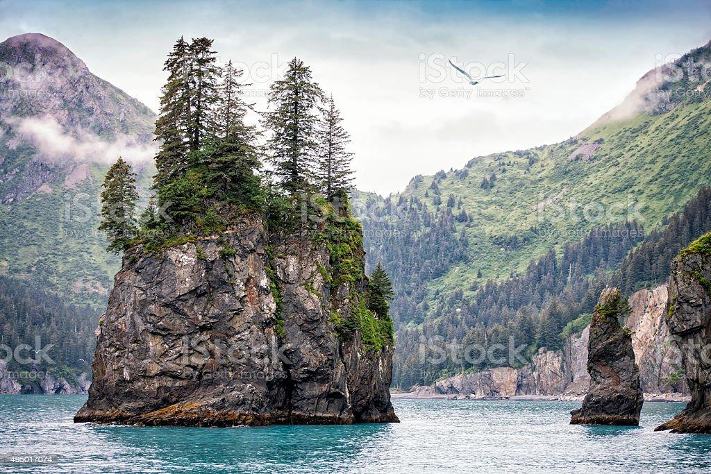 Foggy Day, Kenai Fjords National Park, Alaska, USA stock photo