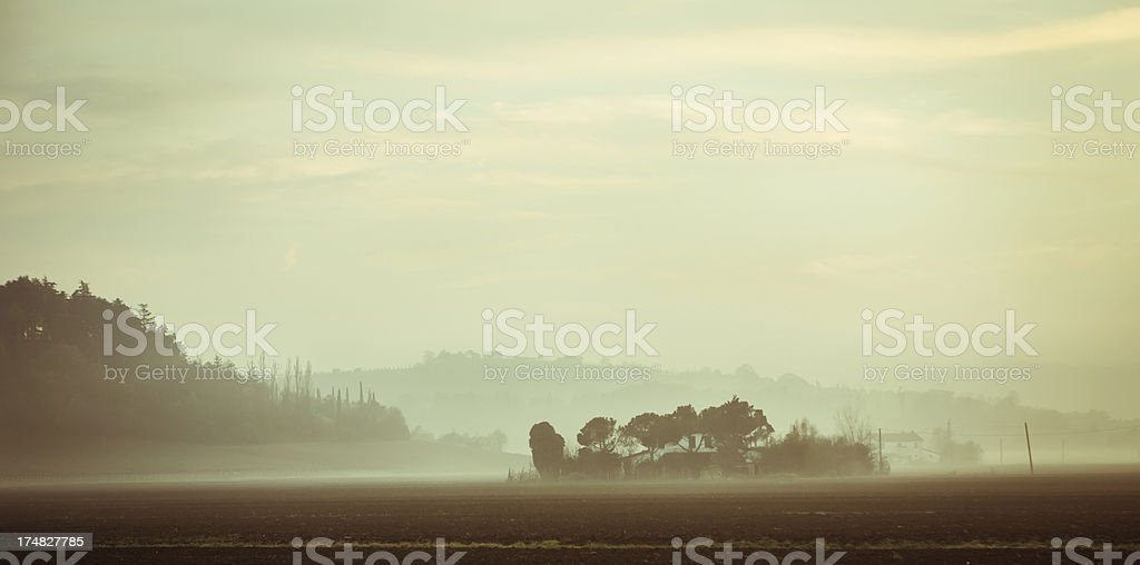 Foggy day royalty-free stock photo