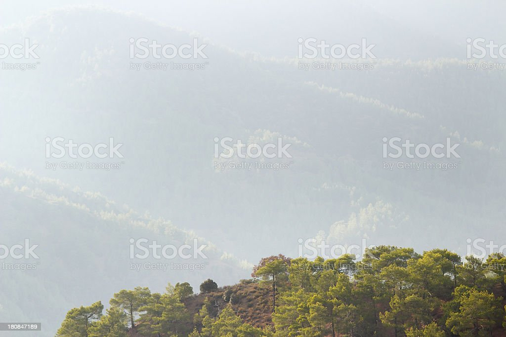 foggy early morningTroodos cypriate mountains  Cyprus stock photo