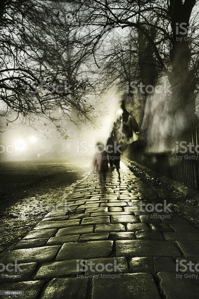 Foggy evening stock photo