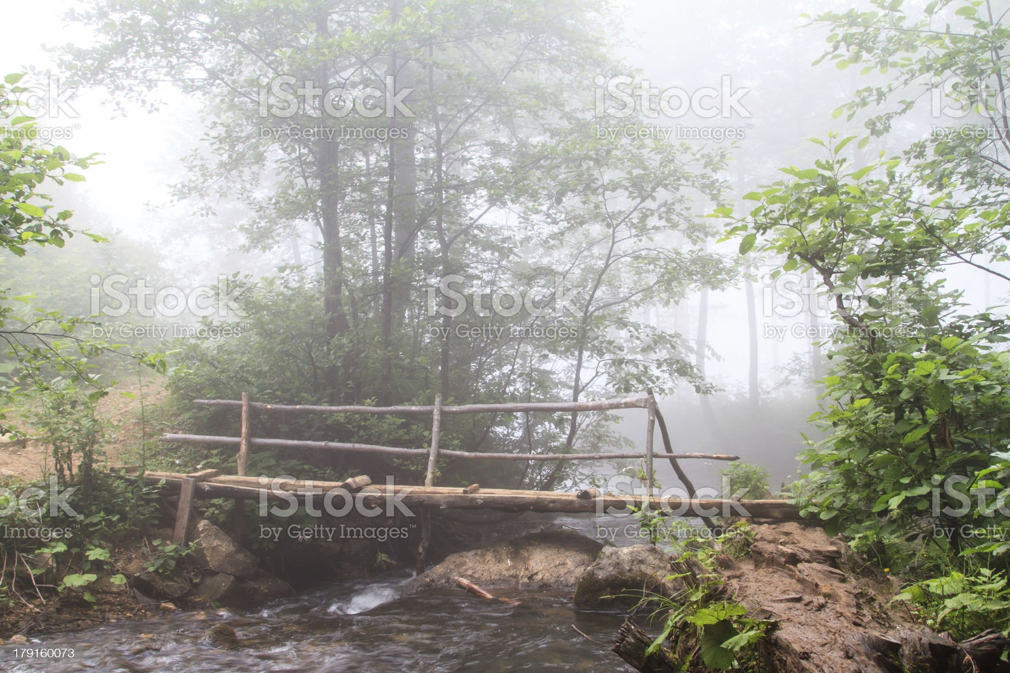 Foggy Forest and Bridge over Stream royalty-free stock photo