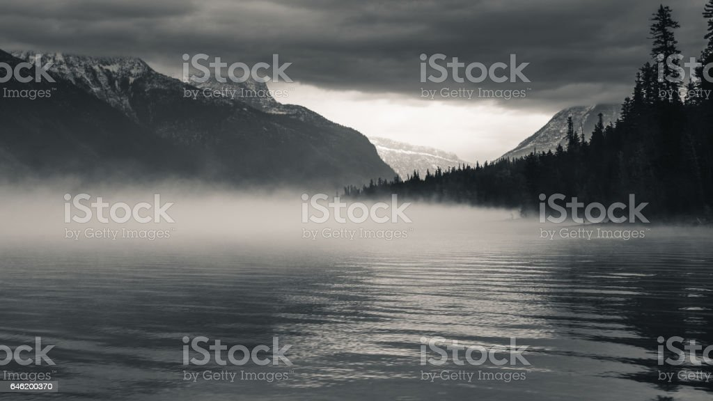 Foggy forest lake stock photo