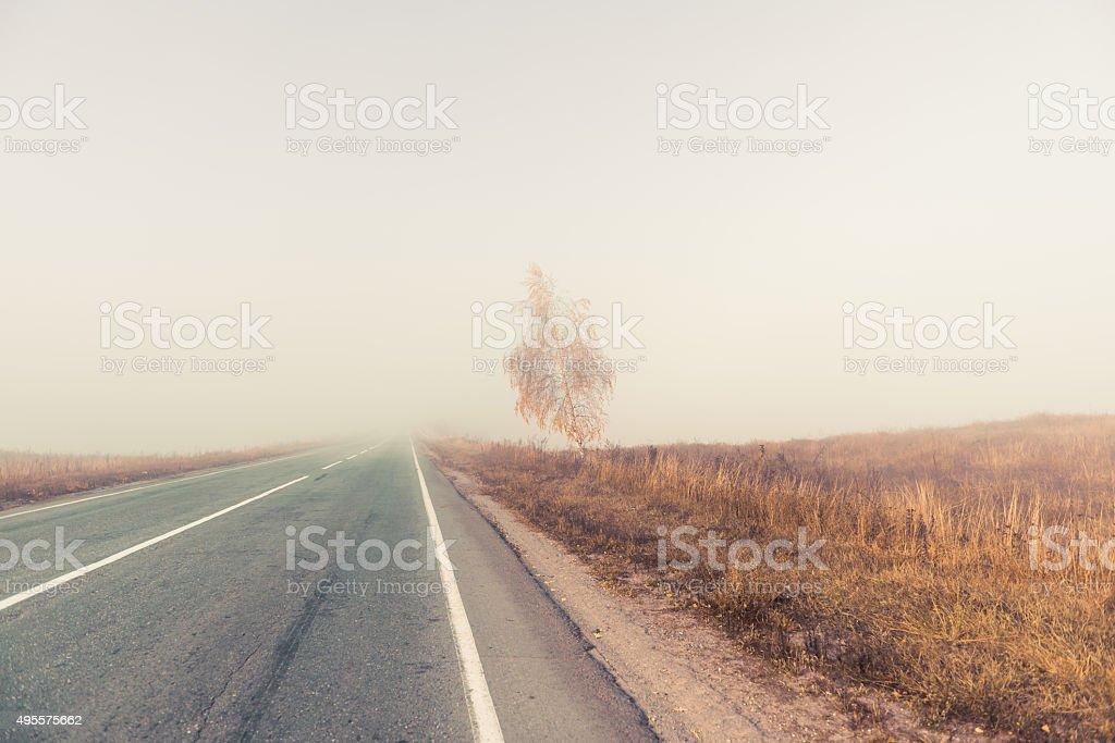 foggy freeway landscape stock photo