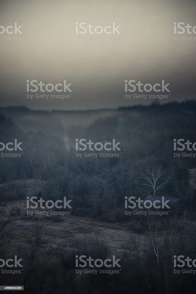 Foggy Haunting Scene royalty-free stock photo