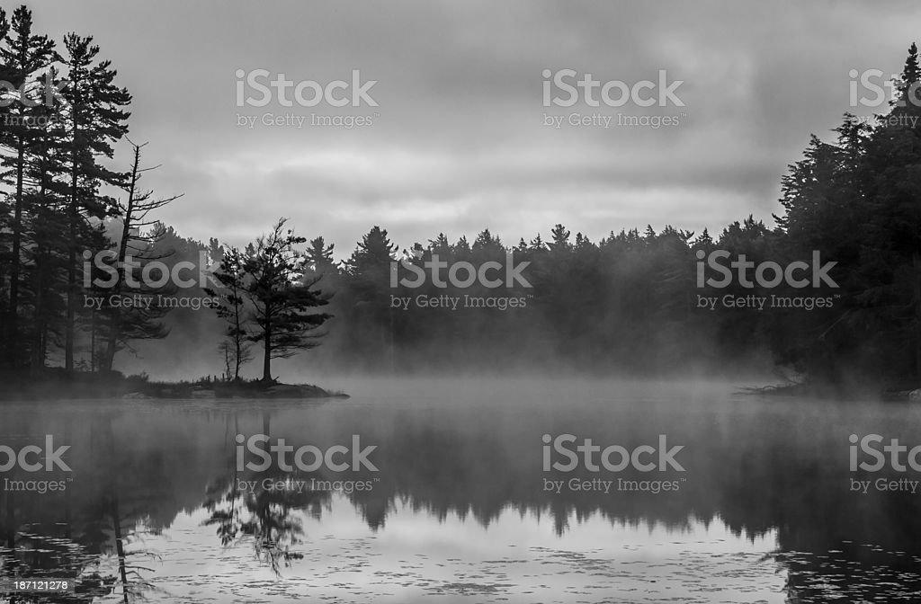 Foggy lake ao nascer do sol-preto e branco foto royalty-free