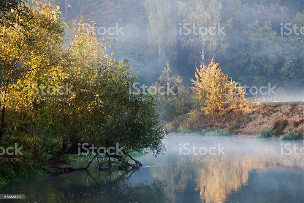 foggy lake stock photo