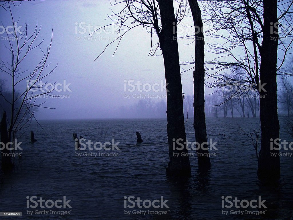 Foggy Lake royalty-free stock photo