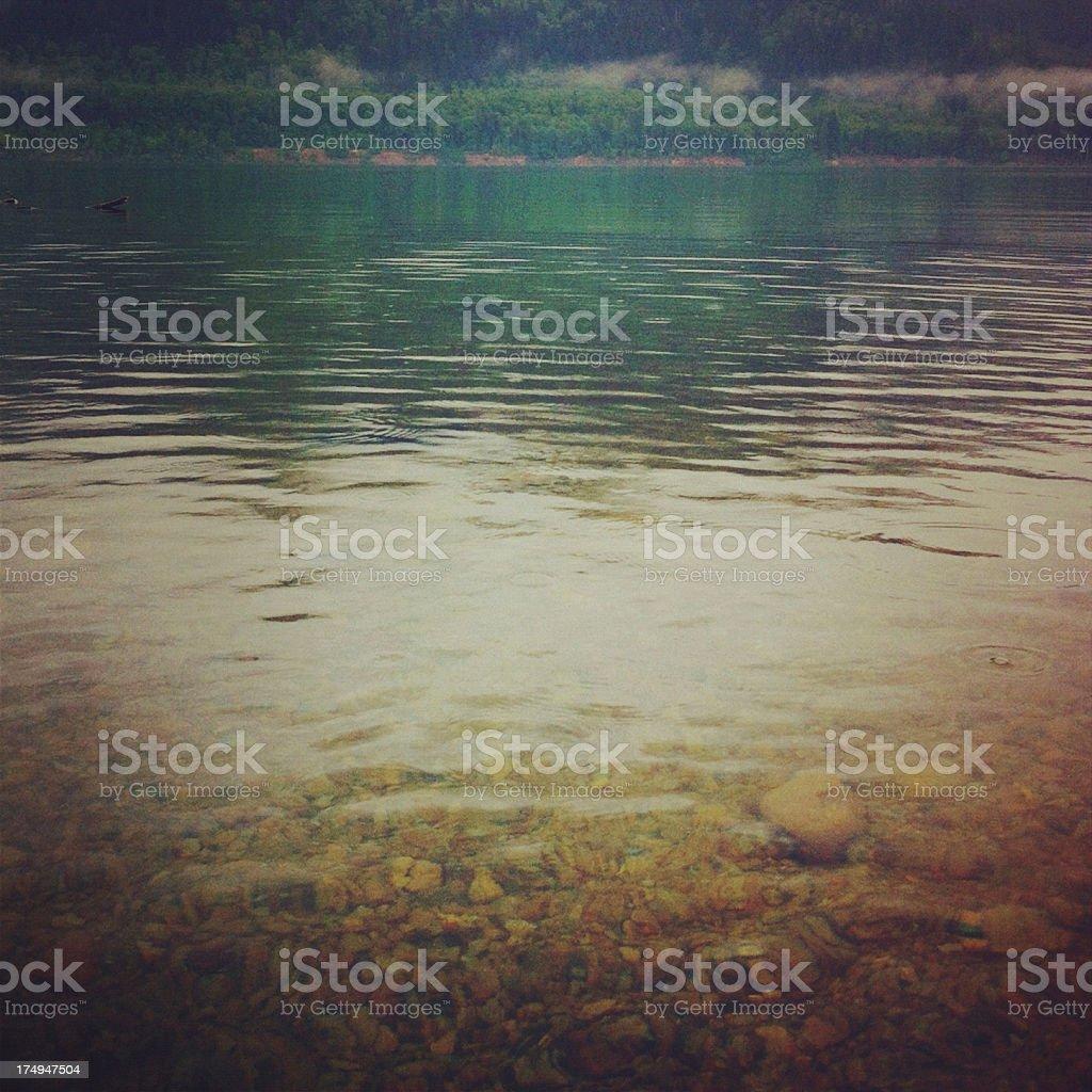 Foggy lake shore royalty-free stock photo