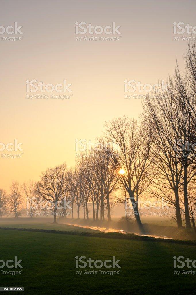 foggy landscape at dusk, Pianura Padana, Italy stock photo