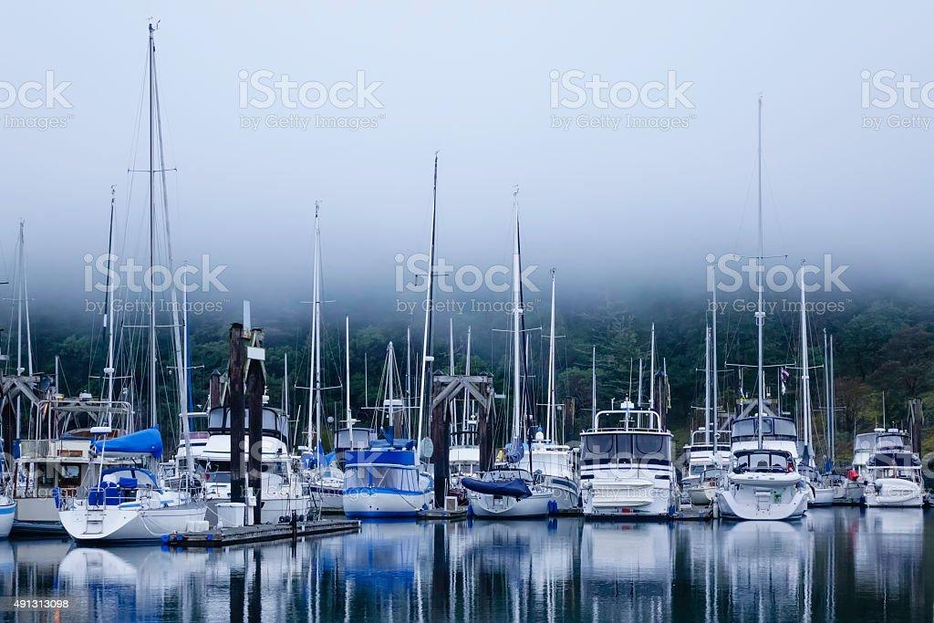 Foggy marina stock photo